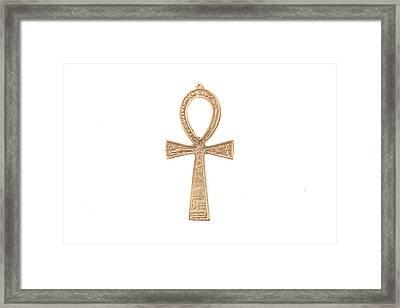 Symbol Of Life Framed Print by Tom Gowanlock