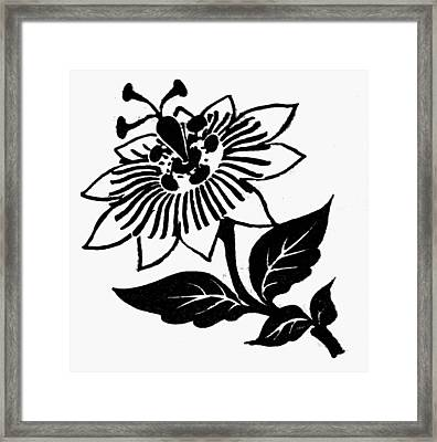 Symbol Passion Flower Framed Print