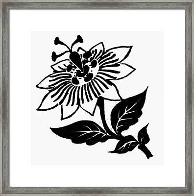 Symbol Passion Flower Framed Print by Granger