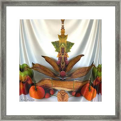 Symmetric Life. Two Ripe Tangerine. 2013 80/80 Cm.  Framed Print by Tautvydas Davainis