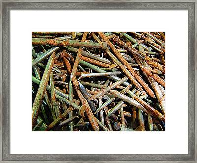 Symphony In Rusty Nails Framed Print by RC deWinter