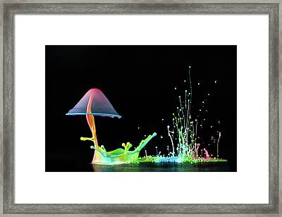 Symphony Of Colors Framed Print