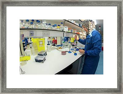 Synthetic Biology Lab Framed Print