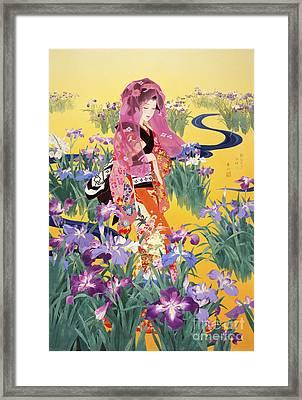 Syoubu Framed Print by Haruyo Morita