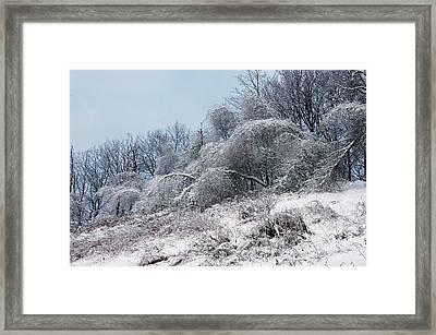 Syracuse Ice Storm Framed Print