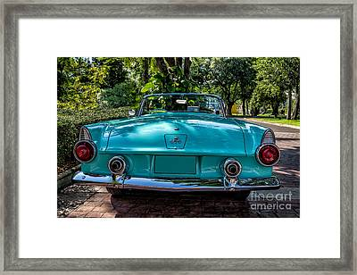 T Bird Framed Print by Adrian Evans