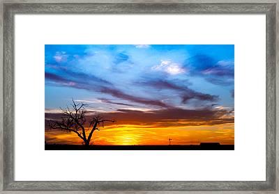 T For Texas  Framed Print