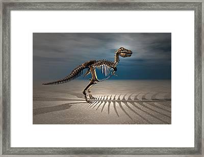 T. Rex Dinosaur Skeleton Framed Print by Carol and Mike Werner
