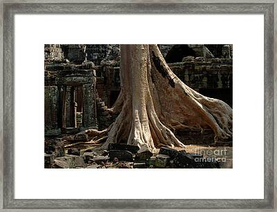 Ta Prohm Cambodia Framed Print by Bob Christopher