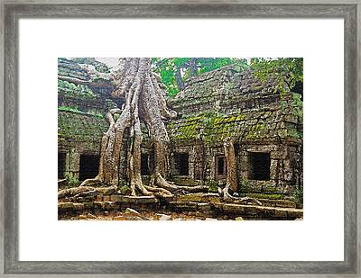 Ta Prohm Temple Ruins Framed Print by Dennis Cox