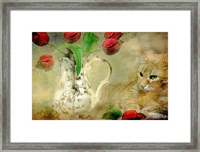 Tabby And Tulips Framed Print