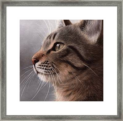 Tabby Cat Painting Framed Print by Rachel Stribbling