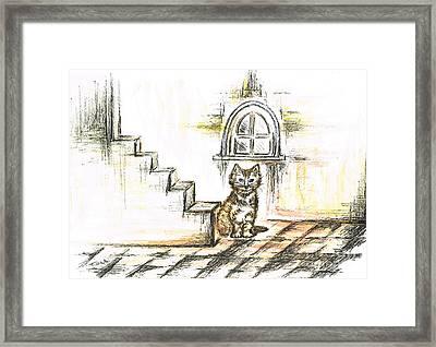 Tabby Waiting Framed Print by Teresa White