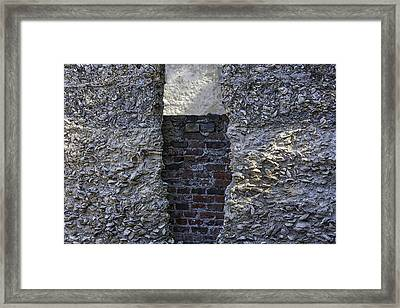 Tabby Wall With Red Brick Infill Framed Print by Lynn Palmer