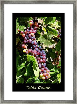 Table Grapes Poster Framed Print