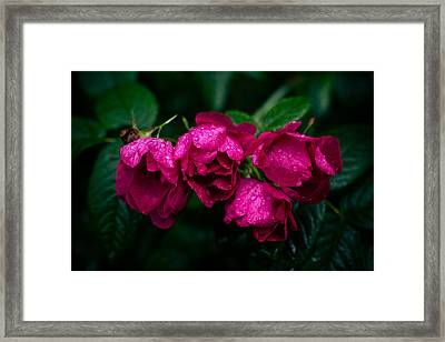 Tacky Minus Framed Print