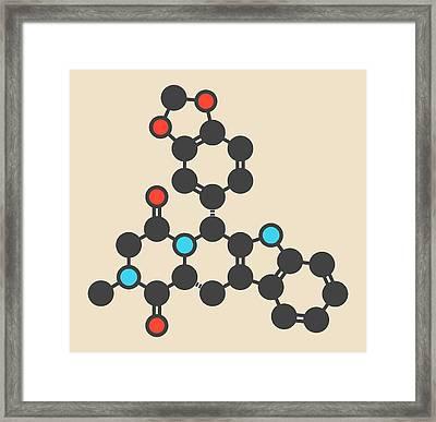 Tadalafil Molecule Framed Print