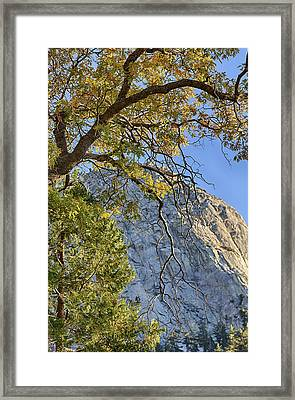 Tahquitz Mountain In Fall Framed Print