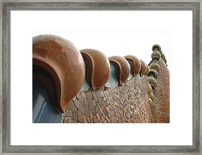 Tail Of The Dragon Iv Framed Print by Kathy Schumann