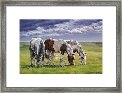 Tail Wind Framed Print