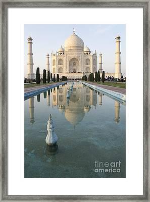 Taj Framed Print