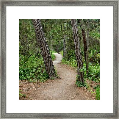 Take A Hike Framed Print by Art Block Collections
