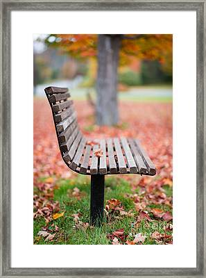 Take A Seat Framed Print by Edward Fielding