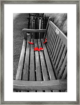 Take A Sit And Relax Framed Print by Nuno Pinto