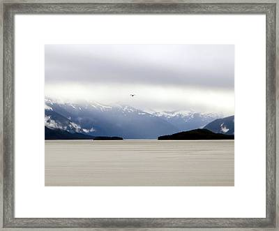 Framed Print featuring the photograph Take Flight by Jennifer Wheatley Wolf