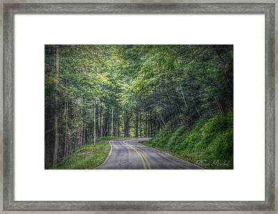 Take It Easy Framed Print by Missy Richards