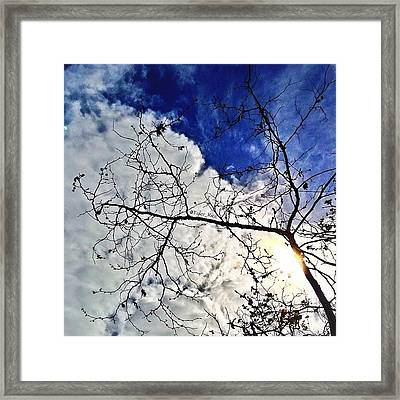 Take It In, Day By Day Framed Print