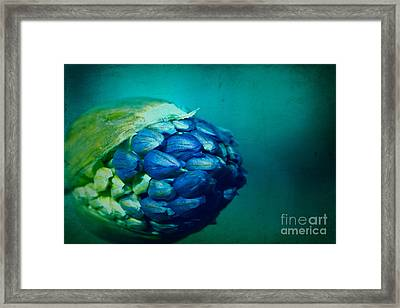 Take Me As I Am Framed Print