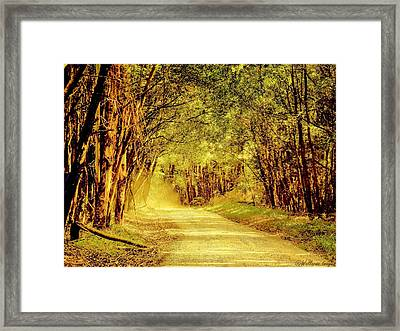 Take Me Home Framed Print by Wallaroo Images