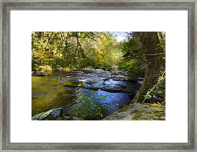 Take Me To The River Framed Print by Debra and Dave Vanderlaan