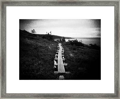 Take Me To The Sea Framed Print by Zinvolle Art