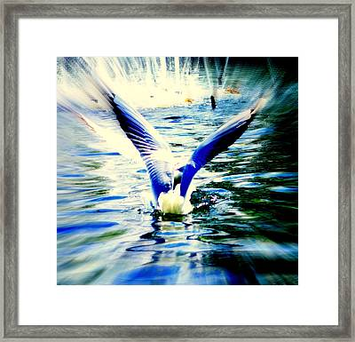 it is take off time but I am just sitting here  Framed Print