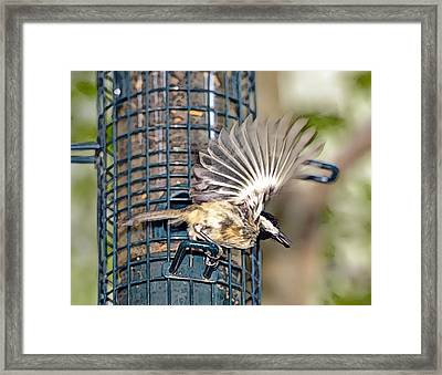Take Out Meal Framed Print