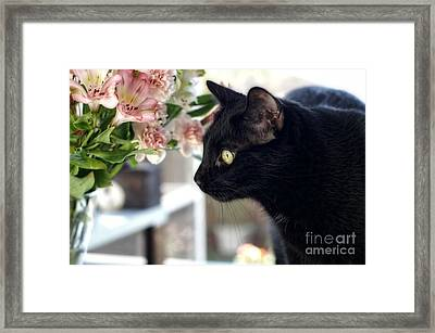 Framed Print featuring the photograph Take Time To Smell The Flowers by Peggy Hughes