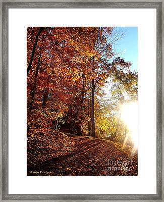 Take Your Bow Framed Print by Christy Ricafrente
