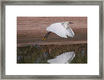 Takeoff Framed Print