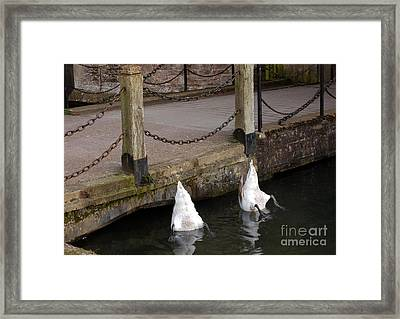 Takes Two Framed Print