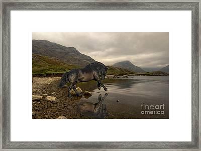 Taking A Dip Framed Print by Wobblymol Davis