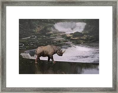 Taking A Stroll  Framed Print by Jack Zulli