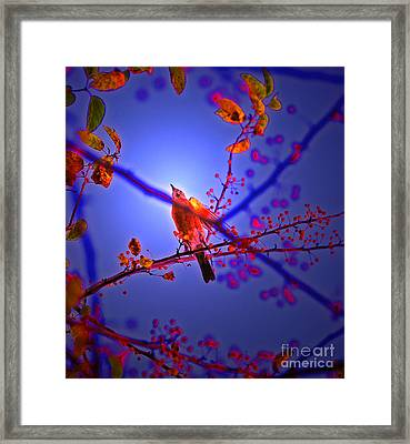 Taking Flight By Jrr Framed Print by First Star Art