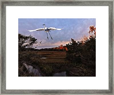 Framed Print featuring the photograph Taking Flight by Laura Ragland