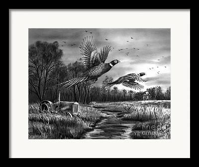 Farm Fields Drawings Framed Prints