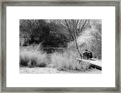 Taking It All In Bw Framed Print