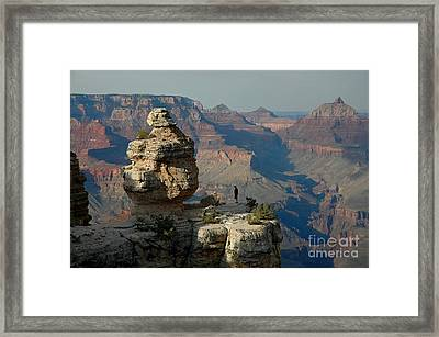 Framed Print featuring the photograph Taking It All In by Nick  Boren