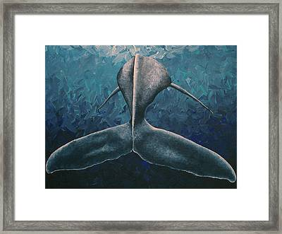 Taking It Slow Framed Print by Nick Flavin
