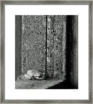 Taking Refuge Framed Print by Angie Vogel